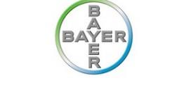 Bayer İşe Alım ve Mülakat Süreci
