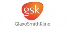 GlaxoSmithKline Mülakat ve İşe Alım Süreci
